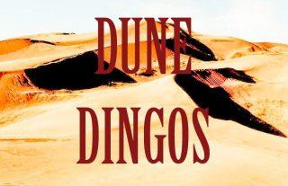 Sanddünen mit dem Schriftzug Dune Dingos
